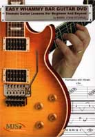 Mark John Sternal – Easy Whammy Bar Guitar