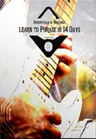 Steve Stine – Essentials of Soloing: Learn to Phrase in 14 Days